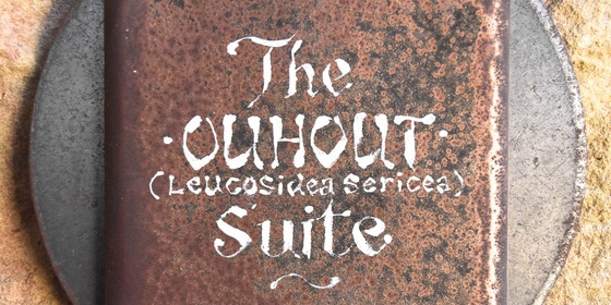The Ouhout Suite - Double Bedroom Apartment